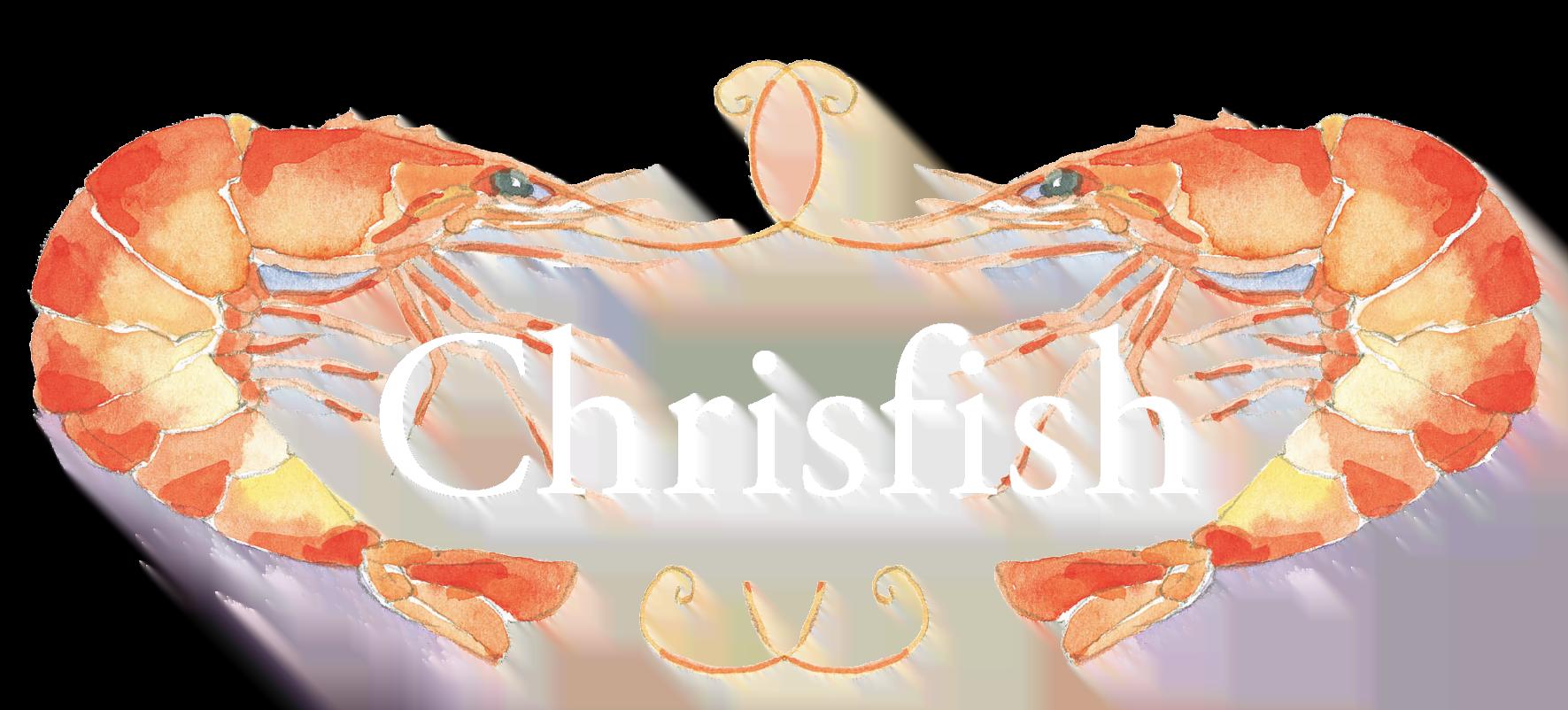 https://www.podi.dk/wp-content/uploads/2021/02/Chrisfish_samletlogo_highres_medium-12.png